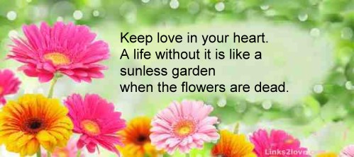 Keep love in your heart...