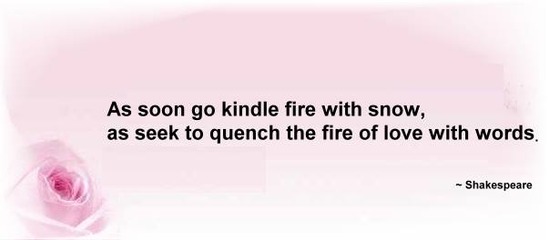 Shakespeare Quote - Cannot quench the fire of love with words