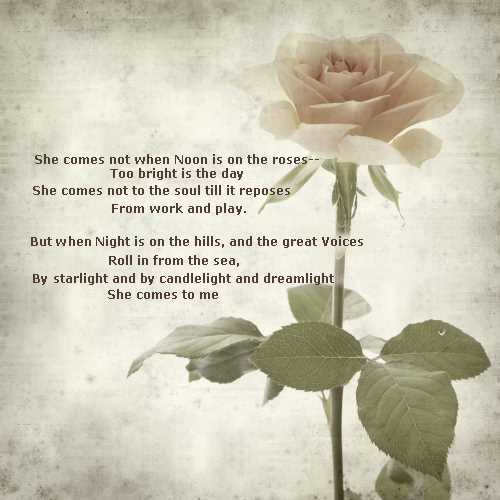 poems for a girl you like