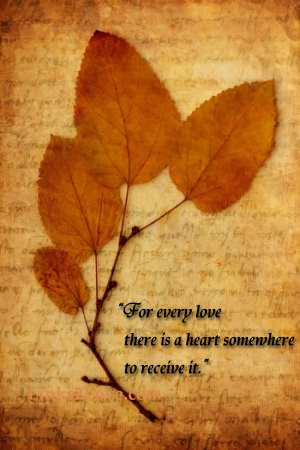 Heart love quotes about the heart quotes romantic heart quote for every love there is a heart somewhere to receive it publicscrutiny Images