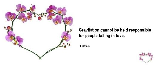 Gravitation cannot be held responsible for people falling in love - Einstein